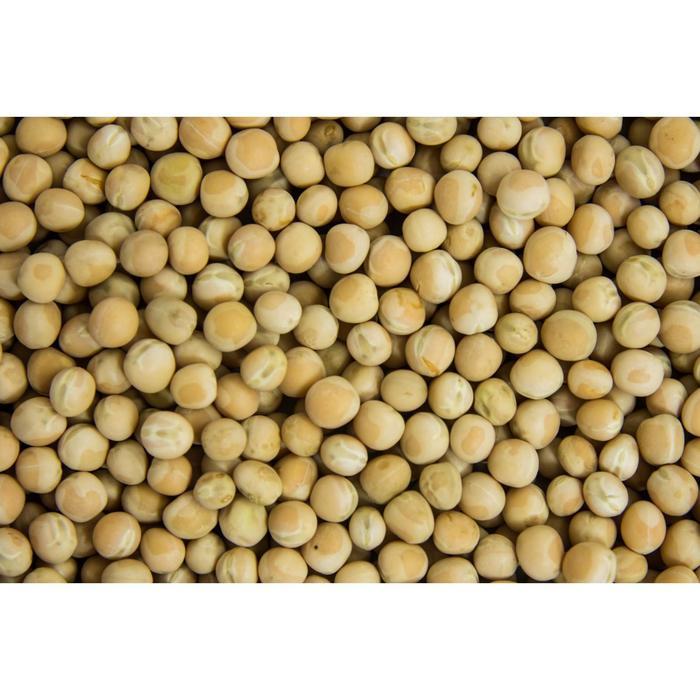 Семена Горох Посевной 25 кг