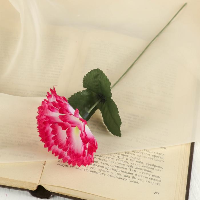 """Цветы искусственные """"Гвоздика 25 см, розовая"""