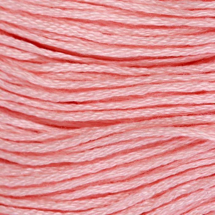 Нитки мулине, 8 ± 1 м, цвет светло-розовый №3713