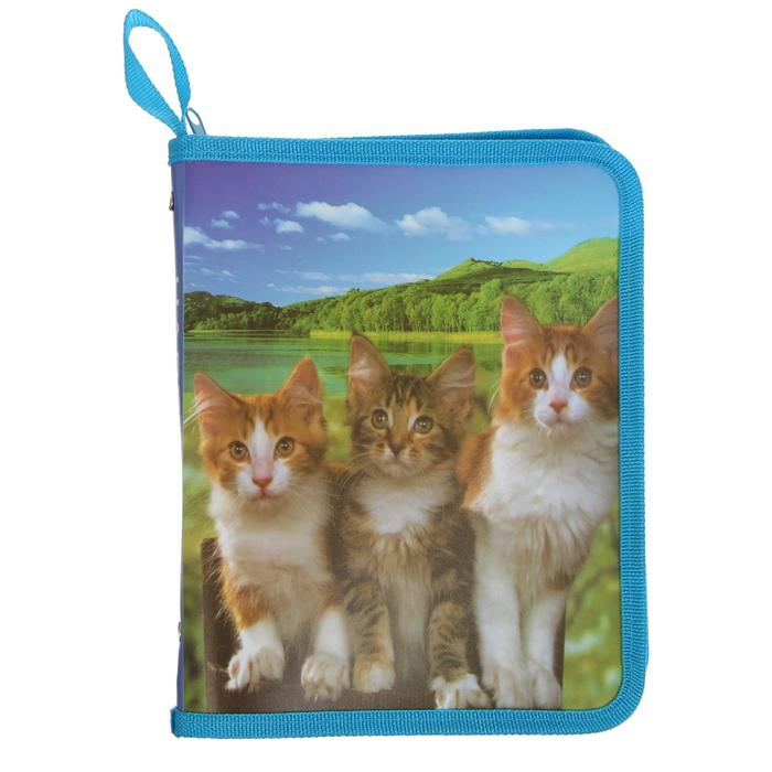 Папка для тетрадей формат А5 на молнии с 3-х сторон Три кошки