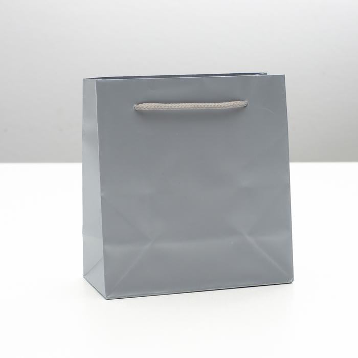 """Пакет ламинированный """"Гамма"""", серый, 14 х 6 х 15 см"""