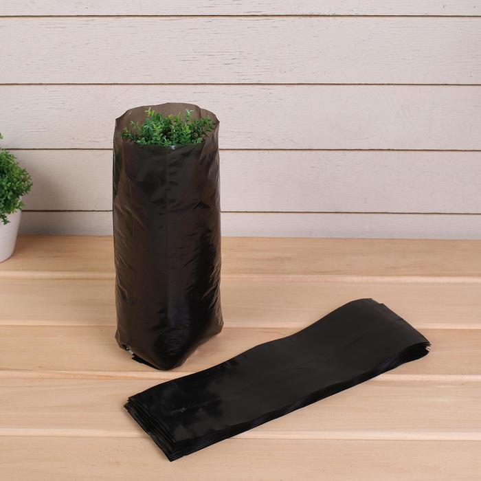 Пакет для рассады, 1.6 л, 8 ? 30 см, толщина 50 мкм, с перфорацией, чёрный