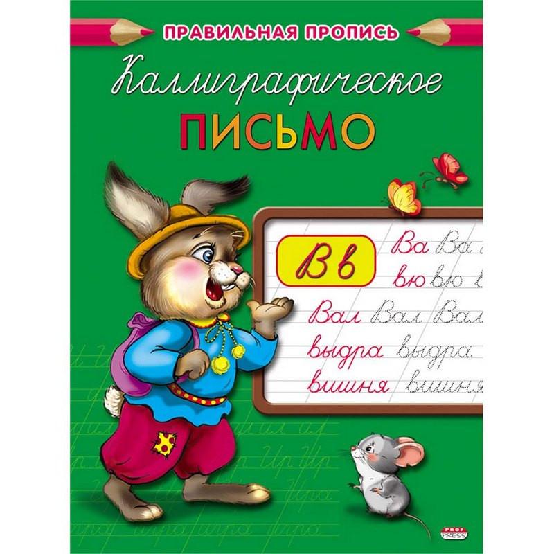 Прописи КАЛЛИГРАФИЧЕСКОЕ ПИСЬМО А5, 8л., ПР-2996