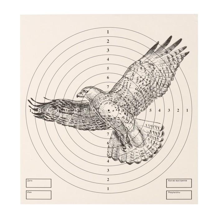 """Мишень """"Орёл"""" для стрельбы из пневматического  оружия, 14 х14 см, дистанция 10 метров"""