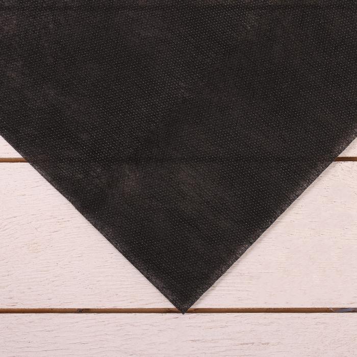 Полоса защитная для междурядий, плотность 80, УФ, 0,3 ? 5 м, чёрный, Greengo, Эконом 20%