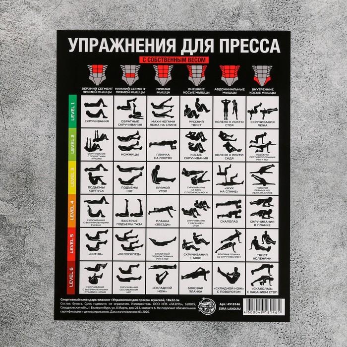 Спортивный календарь-планинг «Упражнения для пресса», 18 ? 22 см