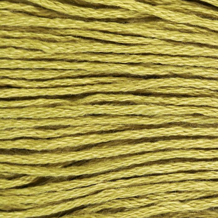 Нитки мулине, 8 ± 1 м, цвет светло-оливковый №3348