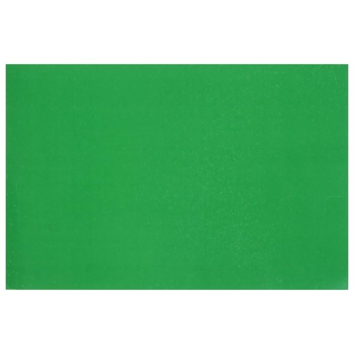 """Картон цветной А4, 240 г/м2 """"Нева"""" зелёный, мелованный"""