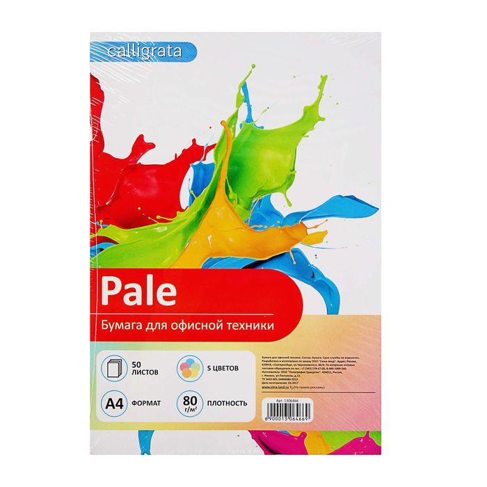 Бумага цветная А4, 50 листов Calligrata Пастель, 5 цветов, 80 г/м?