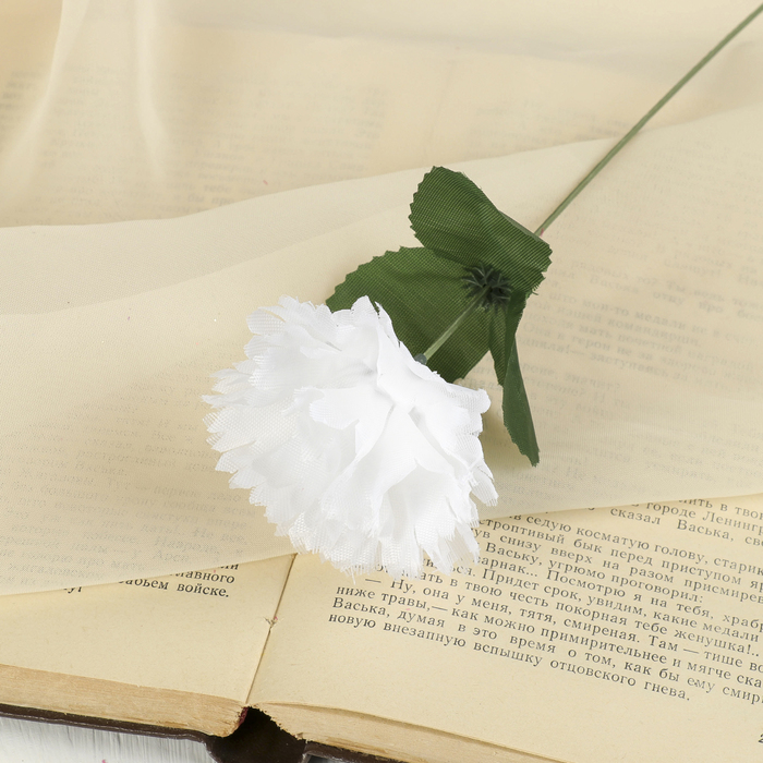 """Цветы искусственные """"Гвоздика 25 см, белая"""