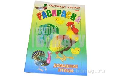 Книжка-раскраска А5 8л. HATBER, Первые уроки, Домашние птицы, 8Рц5_03061 (R002323)