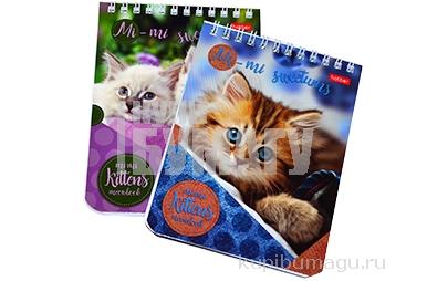 """Блокнот А6, 40 л., гребень, лакированная обложка, HATBER, """"Милые котята"""", 110х145 мм, 40Б6B1гр, В122"""