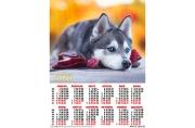 2020 Календарь А2 Собаки. Хаски №4