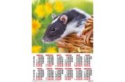 2020 Календарь А2 Крыса с желтыми цветами №9