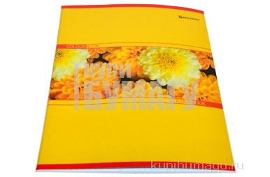 Тетрадь 48л. BRAUBERG кл., обл. мел. карт., Цветы (4 вида),