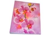 Тетрадь на кольцах, 120л., HATBER, ламин. обл., Розовая орхидея, 120ТК5В1_04374 (T159149)