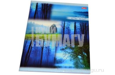 Тетрадь 80л. HATBER, линия, мел. карт. обл., Пробуждение природы, 80Т5В2 (T241851)
