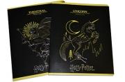 Тетрадь 48клетка «Гарри Поттер», обложка мелованный картон, тиснение фольгой, МИКС