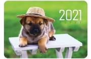"2021 Календарь карманный 70*100 2021 ""Щенки"" HATBER"