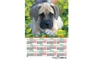 2019 Календарь-плакат А3 297*420 мм Собаки