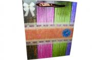 "Пакет подар. бумага 3804 ""Цветные доски"" 21*26*10 /12 /0 /600"