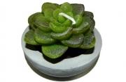 свеча КРАССУЛА 5. 5см зеленый