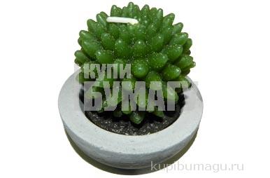 свеча КАКТУС-КОЛЮЧКА 6. 5см зеленый