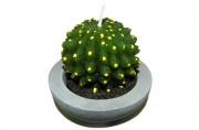 свеча КАКТУС 6. 5см зеленый