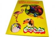 Раскраска пластилином. Необыкновенные птицы. 4 картинки